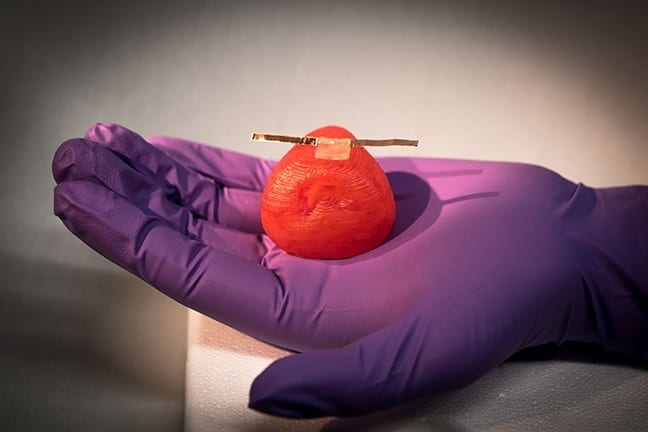 3D printing lifelike artificial organ models