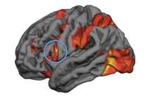 Predicting people's decision-making in moral dilemmas via mirror neuron activity