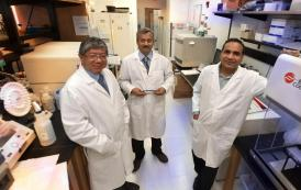 Scientists have developed a way to identify biomarkers for a wide range of diseases
