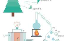 A fuel cell that uses lignin