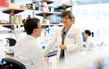 Removal of a single gene can completely block the development of pancreatic cancer - in mice
