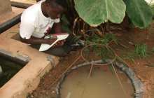 New technology could safely reduce malaria mosquito populations, including insecticide-resistant strains