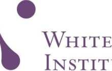 Whitehead Institute