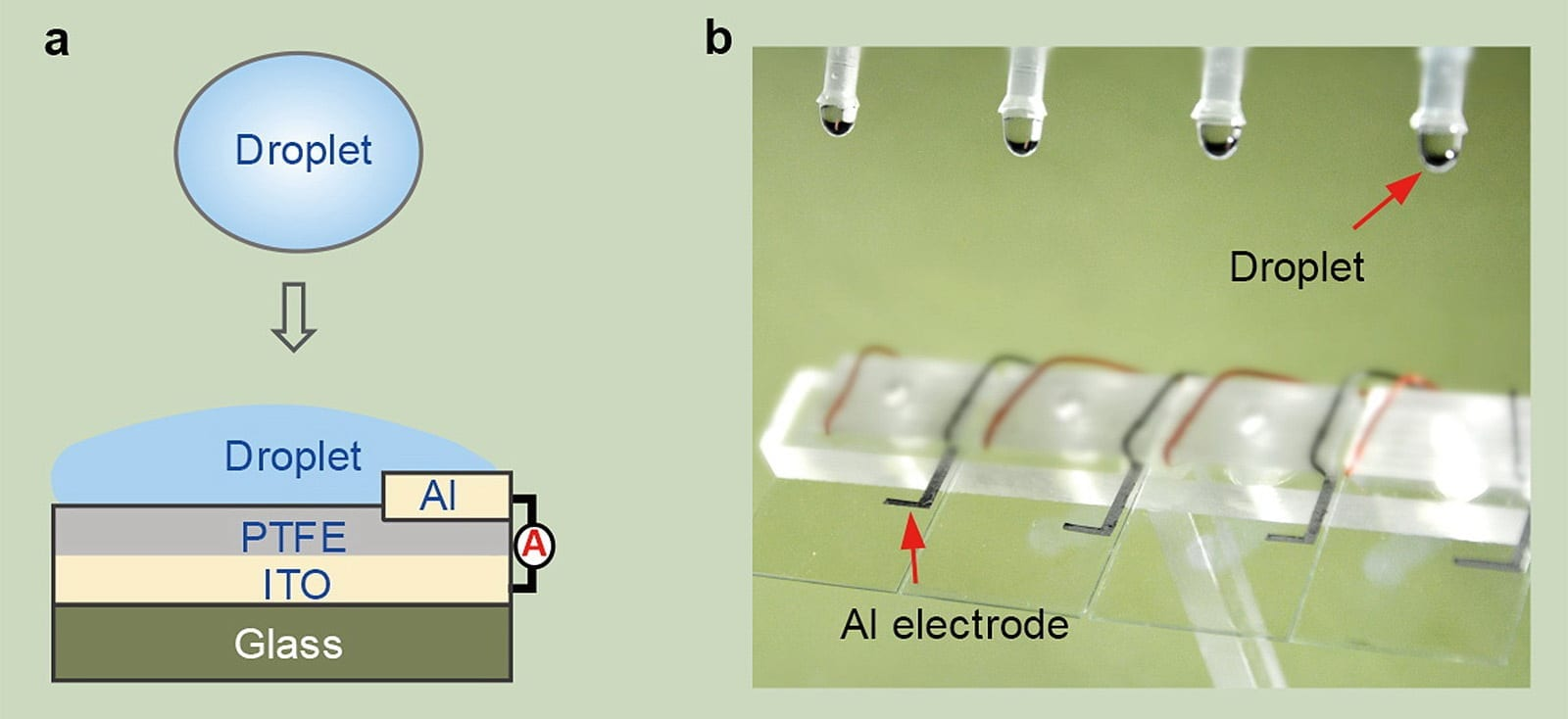 Fig a is the schematic diagram of DEG: an ITO glass slide is coated with a thin film of PTFE and an aluminium electrode is put on top of it. Drops of water act as the gate of the transistor and complete the circuit when they hit the surface of the glass. Fig b is the optical image showing four parallel DEG devices fabricated on the glass substrate.