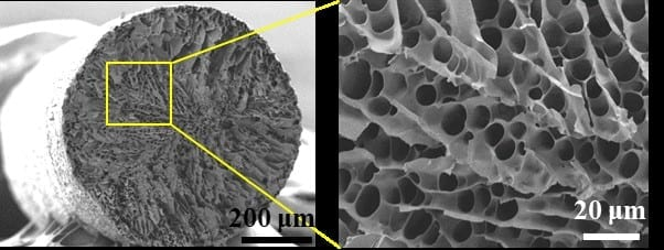 A microstructured fiber (left) contains pores (right) that can be filled with a phase-changing material that absorbs and releases thermal energy. Credit: ACS Applied Materials & Interfaces 2020, DOI: 10.1021/acsami.0c02300