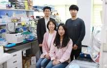 A universal virus detection platform for a wide range of viruses with enhanced sensitivity