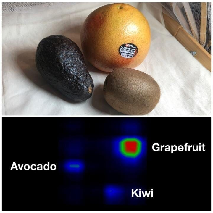 The Capacitivo smart fabric can identify fruit and find lost objects. Overall, the system achieved a 94.5% accuracy in testing. Figure courtesy of XDiscovery Lab.