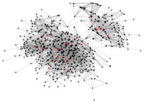 Informal network of PCCA