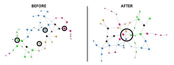 Leadership team connectivity network