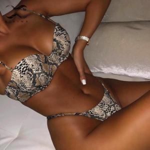Snake print bikini Push up swimsuit female bathing suit String thong Brazilian bikini 2019 High cut Innrech Market.com