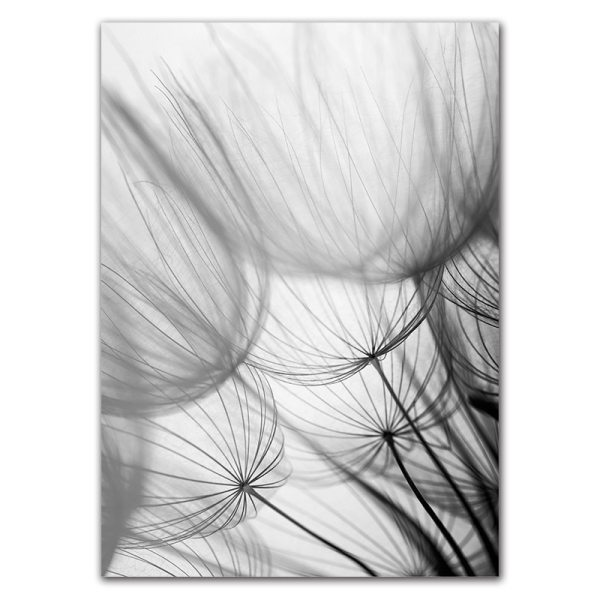 Nordic Dandelion Art Canvas Painting Posters And Prints Black White Loves Life Quotes Wall Pictures For 4 Nordic Dandelion Art Canvas Painting Posters And Prints Black White Loves Life Quotes Wall Pictures For Living Room Decor AL133
