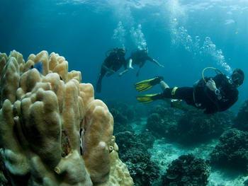 Immersioni in Thailandia