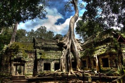 Un viaggio nelle meraviglie della storia e della natura. Visita Angkor.