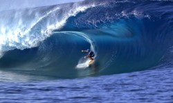 surf in indonesia