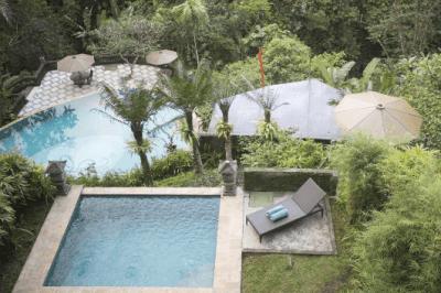 anahata villas and spa resort - bali