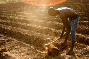 A farmer preps his field for seeding outside Lilongwe, Malawi. Photo courtesy Stephen Morrison/Department of Foreign Affairs and Trade (Australia)/Flickr