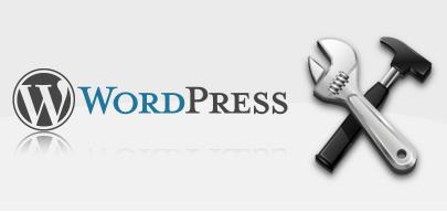wordpress-theme-customize