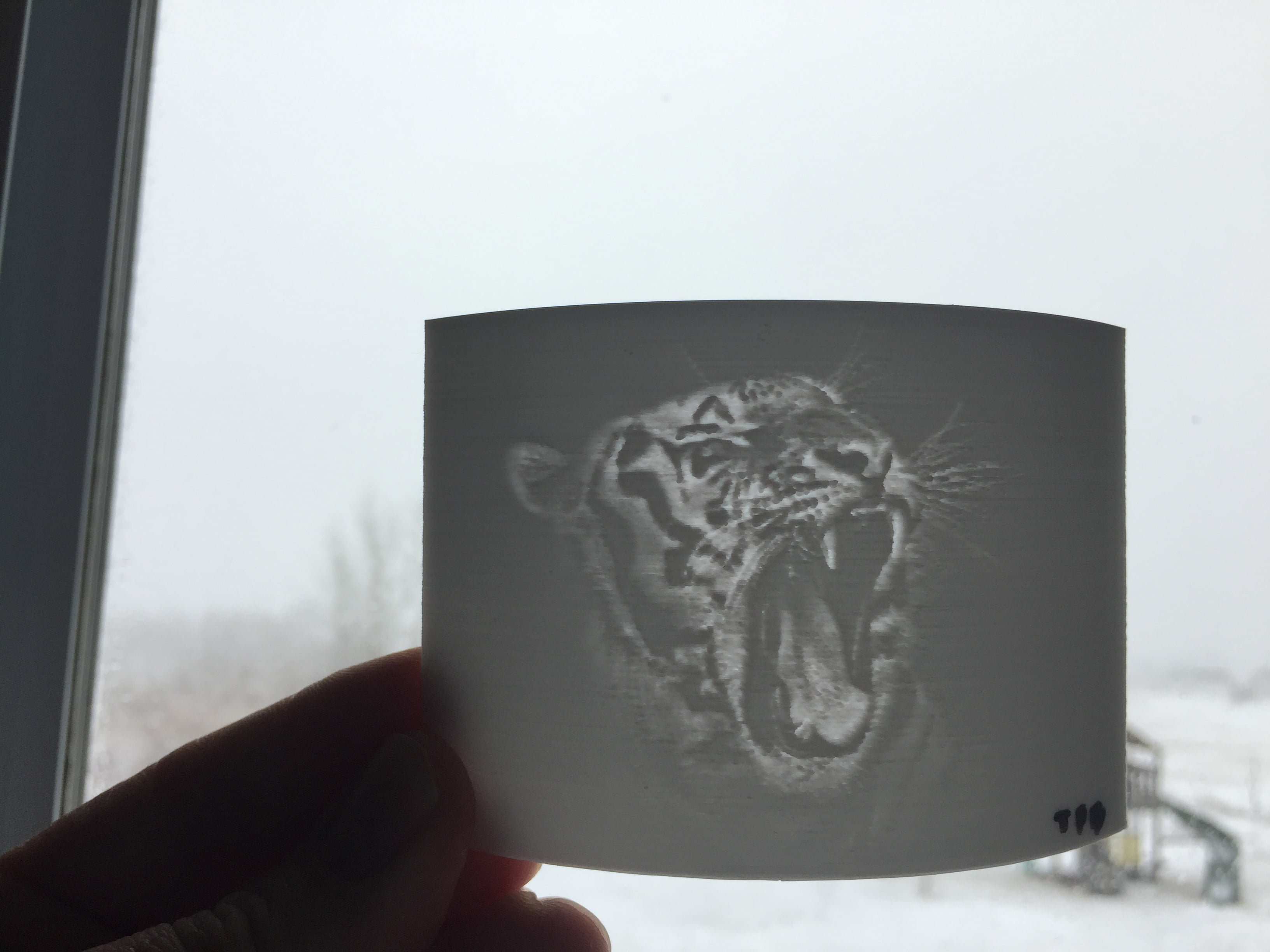 Lithophane Tutorial: 3D Printing Pictures on the Tornado
