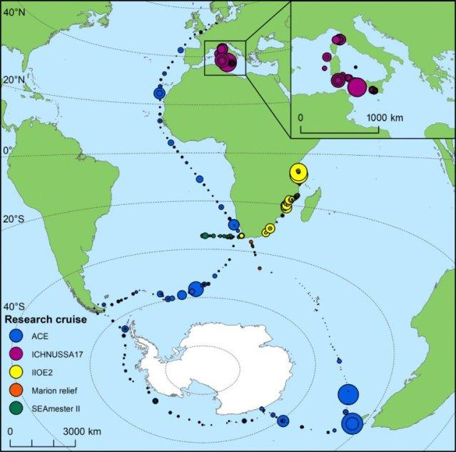 Microfibras nos oceanos não são plástico, são fibras de algodão e lã