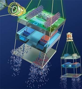 Computador von Neumann quântico e simulador quântico digital