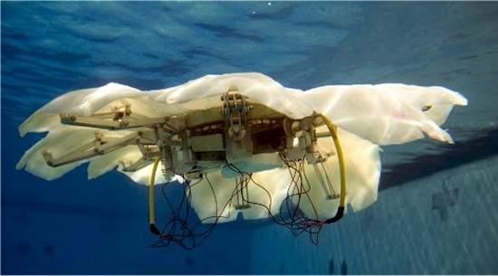 Robô-água pretende nadar sem cérebro