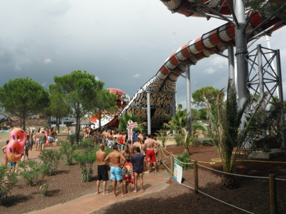 Aqualand_Frejus_King_Cobra (6)