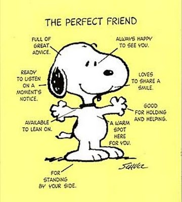 the-perfect-friend1