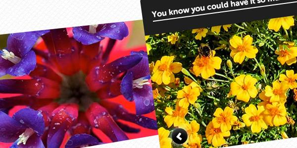 Experimental CSS3 Only Image Slider with 3D Transforms ...