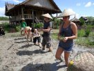 Living Land Farm - Planting Rice