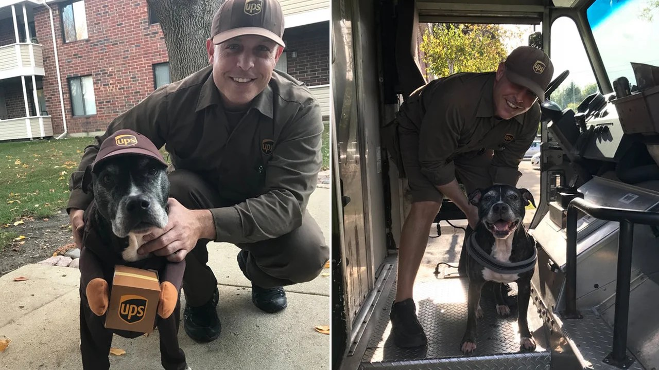 Family Dresses Dog Up As Her Favorite Ups Driver For