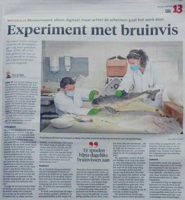 Krantenknipsels    Bruinvis Naturalis