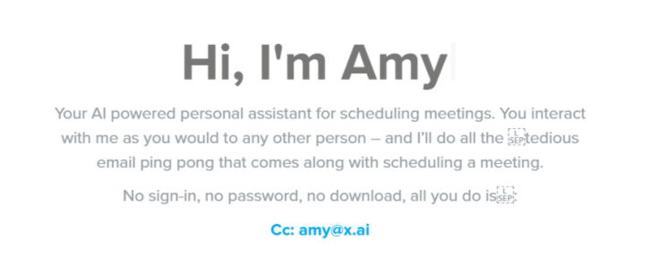 Amy chatbot-Retail Technology