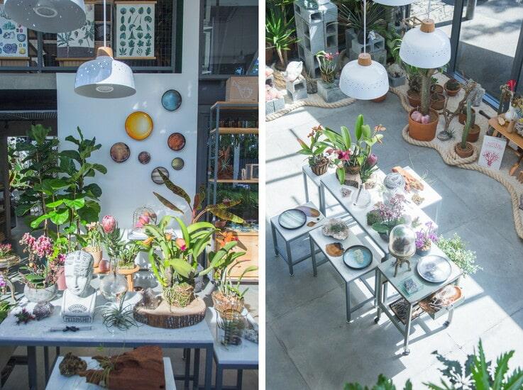 Flo Botanica - Botanicals Concept Store