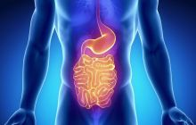 The Power of Poop: Human Stool as a Cure for Gastrointestinal Disease