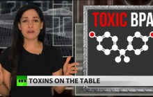 Toxic BPA Found in Foods Targeted to American Children