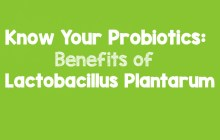 Know Your Probiotics: Benefits of Lactobacillus Plantarum