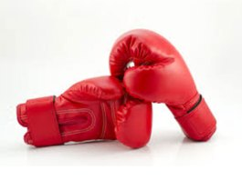 Indian boxers on a roll at Serbian youth boxing tourney