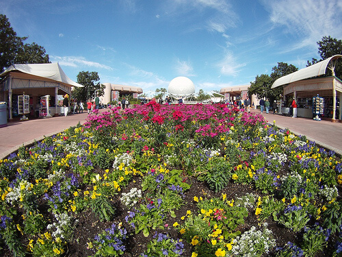 Flowers and Spaceship Earth