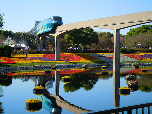 Flower beds and water