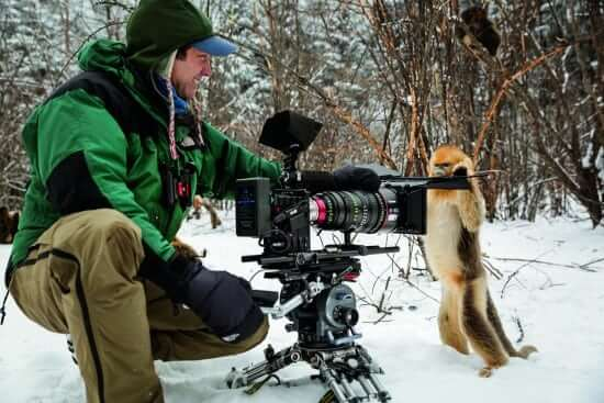 Description: Cinematographer Justin Maguire filming golden snub-nosed monkeys.