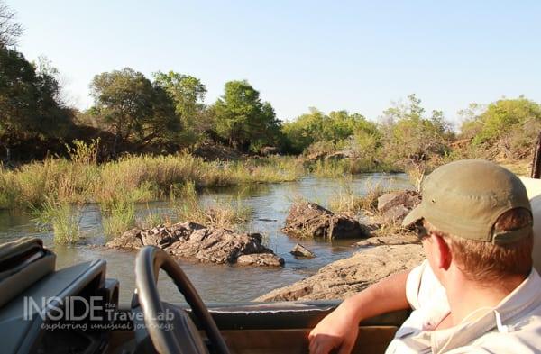 On safari in Madikwe