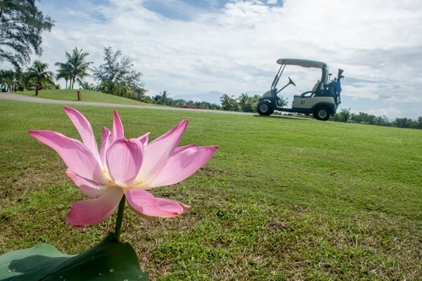 Flower and golf buggy in Borneo