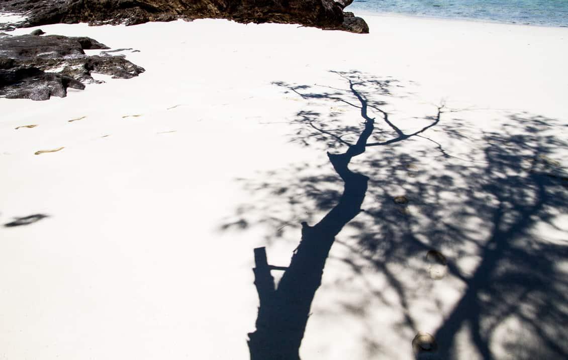 Shadows on the beach in Madagascar