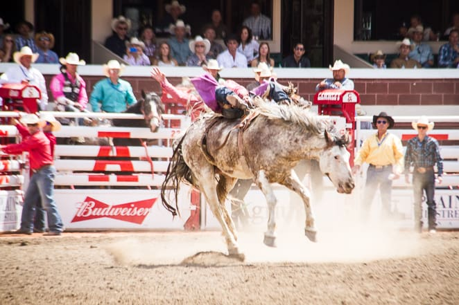 Athletes compete at the Calgary Stampede