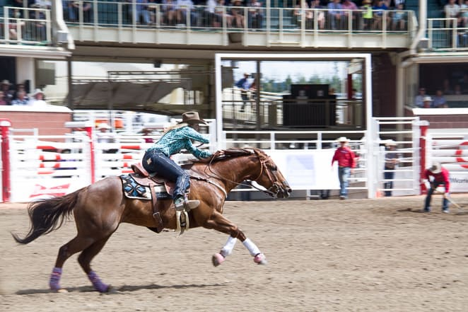 Barrel racing in the rodeo at the Calgary Stampede