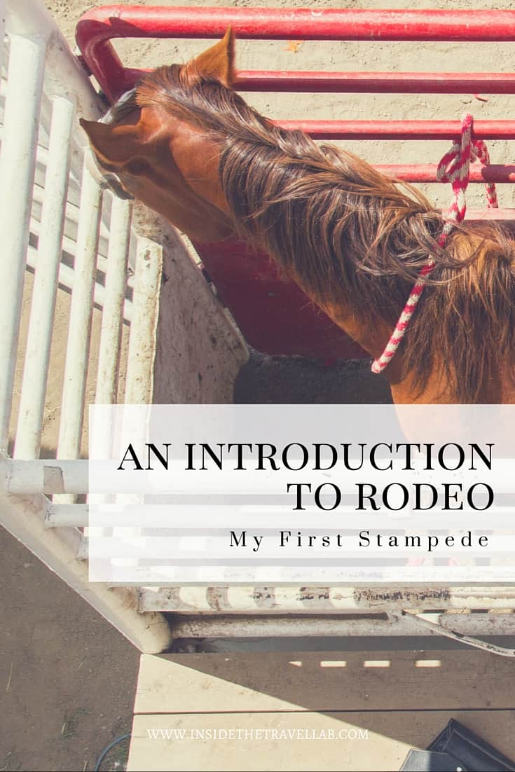 Unusual things to do in Canada > Rodeos are strictly timed, strictly regulated procedures, consisting of a fixed pattern of events that must be completed within a regulated timeframe. - via @insidetravellab