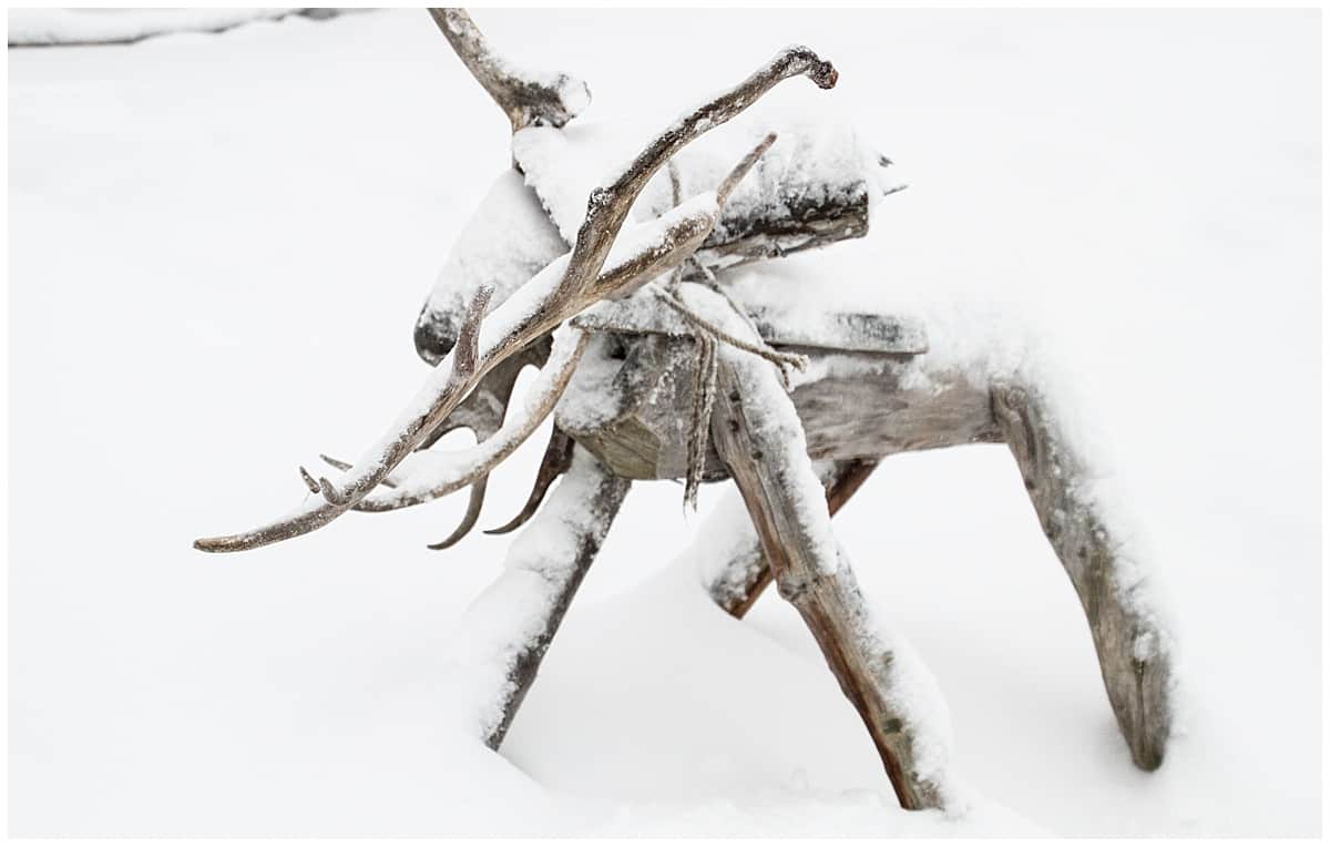 Reindeer: meat, fur, power - and inspiration for art