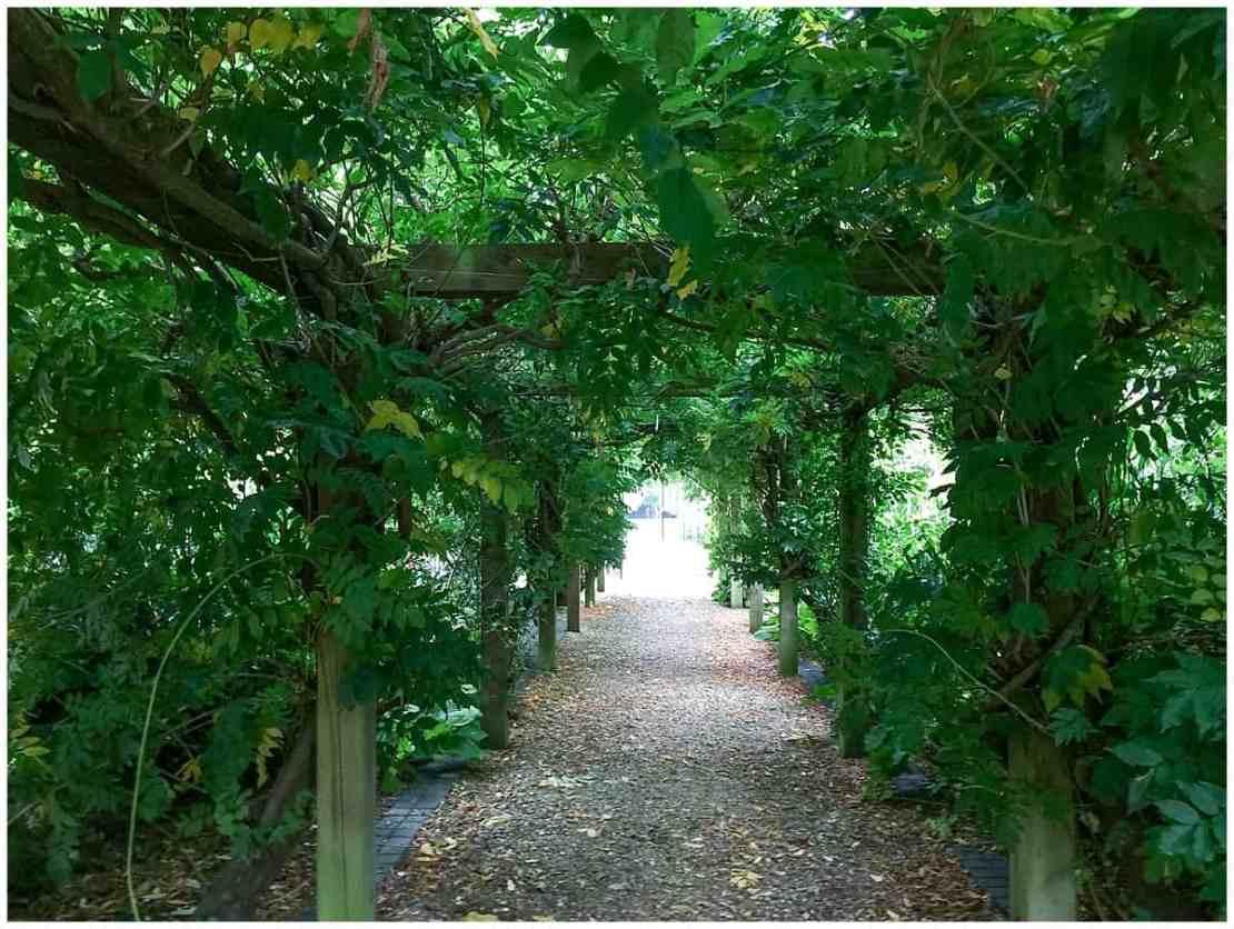 Tylney Hall Gardens Leaf Arcade
