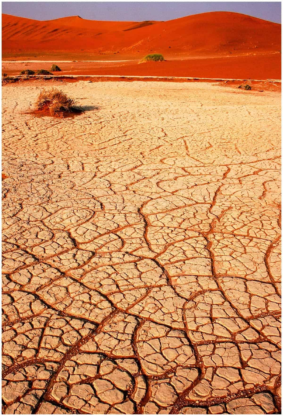 Cracked sand in the Namin desert at Sossusvlei