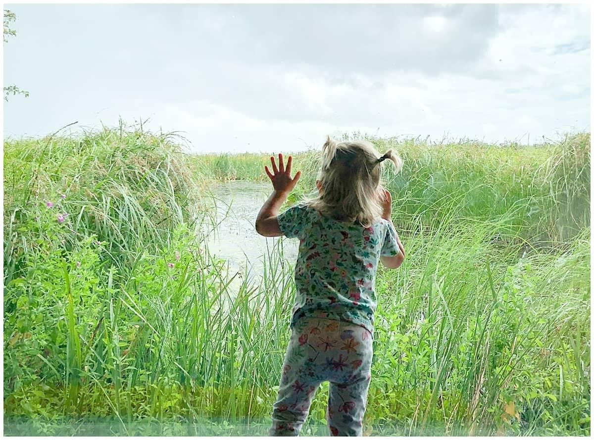 Llanelli Wetlands Centre in Wales